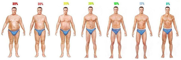 how to lose 10 percent body fat